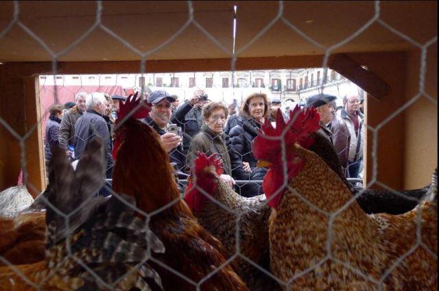 Mercado Agrícola de Navidad en Vitoria Gasteiz